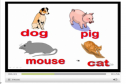 Video: What's your favourite animal? | Recurso educativo 11784