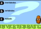 Invertebrates and vertebrates | Recurso educativo 21640