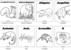 Animals colouring pages | Recurso educativo 70261